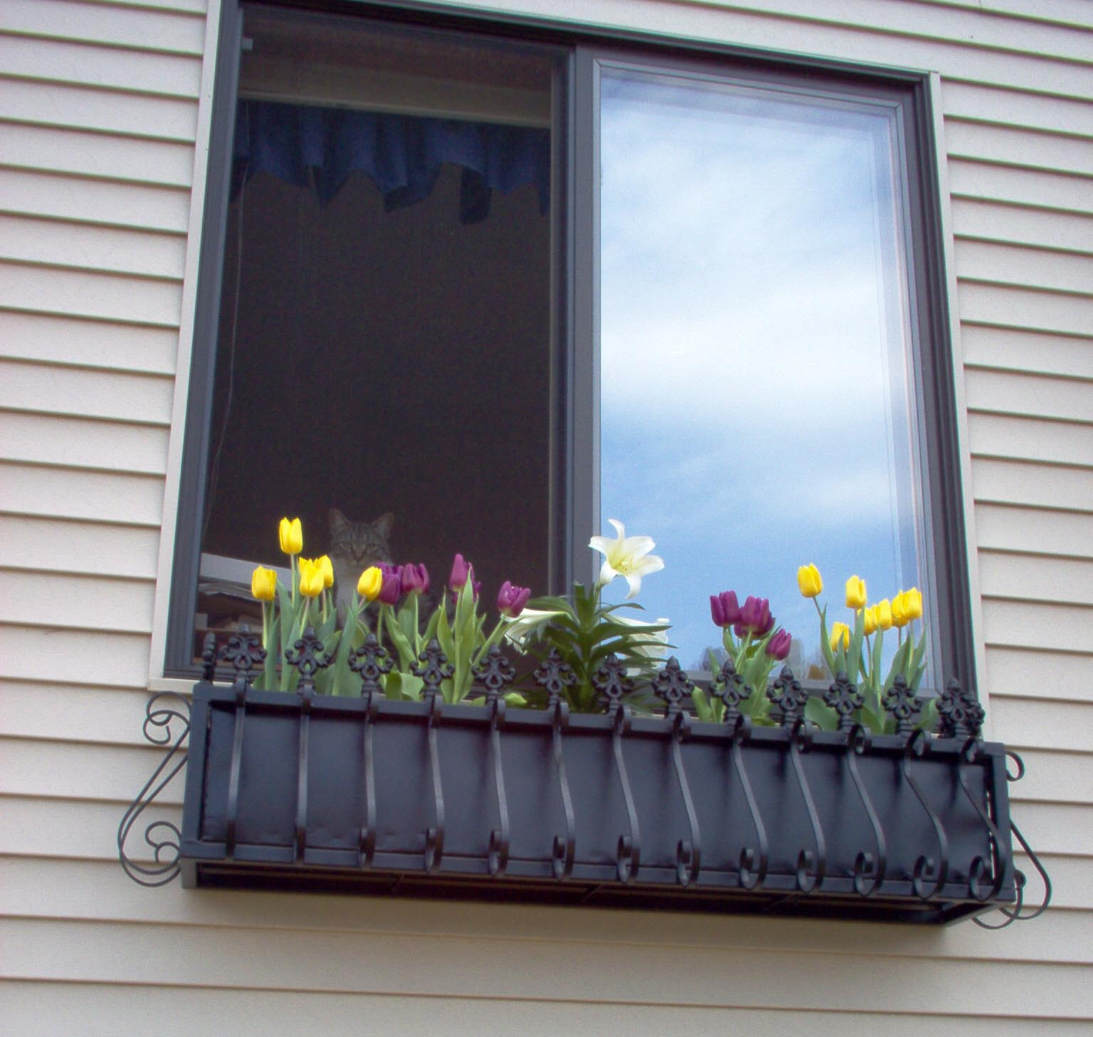 Download flower box designs plans free for Window design box